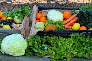 Photo #4: Join Our Group to Get Local Organic Produce! Abundant Harvest Organics