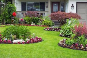Photo #3: Lawn & Yard Services