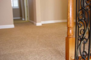 Photo #23: A-1 CARPET & UPHOLSTERY CLEAN. SAME DAY! 3 rooms & HALL $44.95