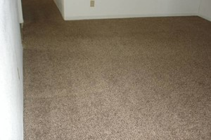 Photo #13: A-1 CARPET & UPHOLSTERY CLEAN. SAME DAY! 3 rooms & HALL $44.95