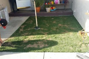 Photo #3: Preston Landscaping. Artificial Turf [Synthetic Grass]