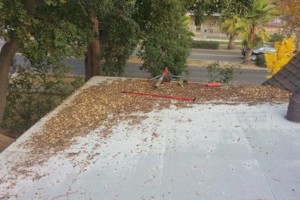 Photo #17: ROOFTO $95.00 GUTTER CLEANING