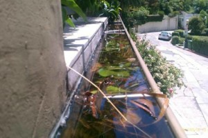 Photo #2: Power Wash for DECKS, Walks, Roofs, Fences, Walls, Driveways,
