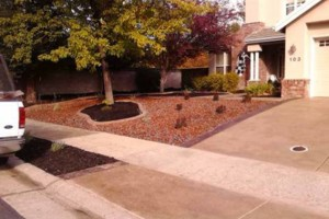 Photo #3: Cruz Landscaping Services. Leave your Lawn care to us!