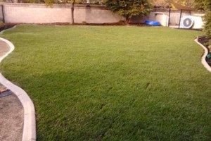 Photo #1: Cruz Landscaping Services. Leave your Lawn care to us!
