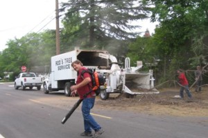 Photo #4: ROD'S TREE SERVICE - LICENSE # 679609