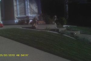 Photo #6: Budget Lawn care - Quality/affordable lawn care or one time cleanups