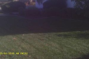 Photo #4: Budget Lawn care - Quality/affordable lawn care or one time cleanups