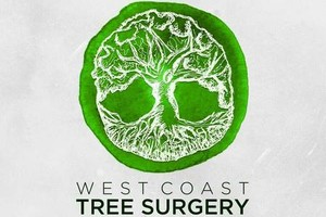 Photo #5: West Coast Tree Surgery | Certified Arborist | Reasonable Rates