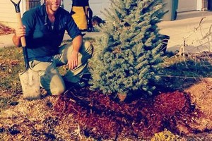 Photo #1: West Coast Tree Surgery | Certified Arborist | Reasonable Rates