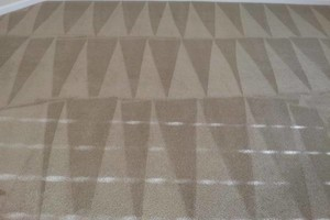 Photo #1: A-1 Steam carpet cleaning, pet stain and odor removal