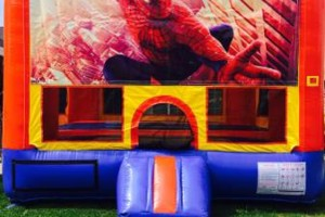 Photo #9: Disney Cartoon bounce house rentals. Hot deals!