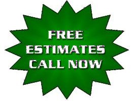 Photo #2: Tree Removal & Pruning Services (Lisenced&Insured)