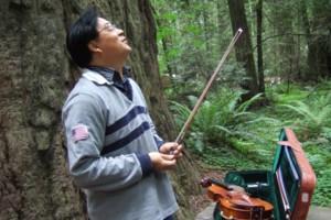 Photo #1: Violin Private Lesson by Suzuki Music School