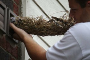 Photo #2: Dryer Vent Servicing / Lint Removal $79.99