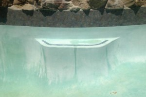 Photo #6: Pool Polishers. Swimming Pool Service And Repairs