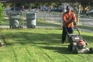 Photo #2: LAWN SERVICE... Lawn analysis and treatment