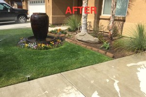 Photo #6: LOW COST YARD MAINTENANCE SERVICES. FREE ESTIMATES!