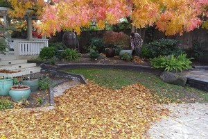 Photo #1: LOW COST YARD MAINTENANCE SERVICES. FREE ESTIMATES!