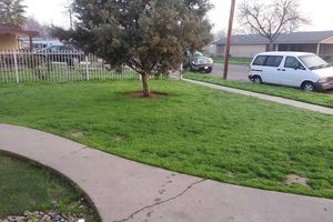 Photo #2: Lawn Service - cutting, edging and clean up