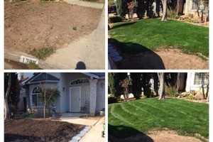 Photo #5: Landscaper Martinez
