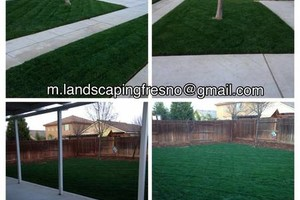 Photo #9: Landscaper Martinez