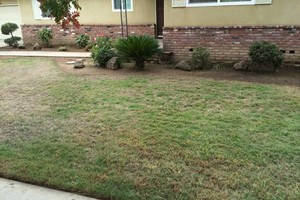 Photo #12: Landscaper Martinez