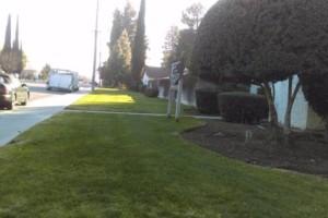 Photo #19: JJR lawn service