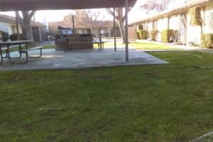 Photo #18: JJR lawn service