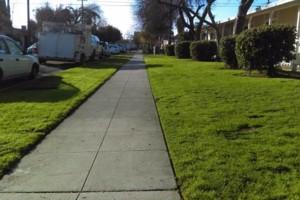 Photo #17: JJR lawn service