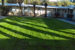 Photo #16: JJR lawn service
