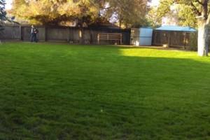 Photo #12: JJR lawn service