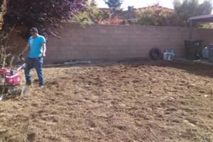 Photo #11: JJR lawn service