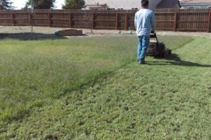 Photo #10: JJR lawn service