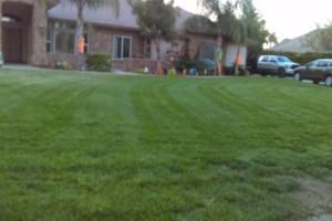 Photo #8: JJR lawn service