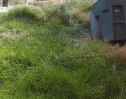 Photo #6: JJR lawn service