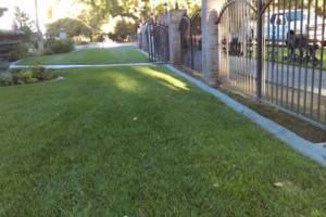 Photo #3: JJR lawn service
