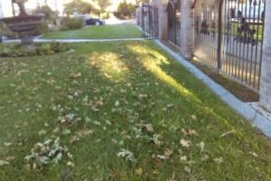 Photo #2: JJR lawn service
