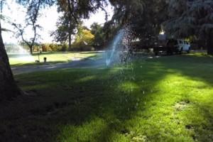 Photo #1: JJR lawn service