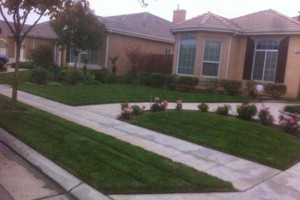 Photo #11: ACOSTA LAWN SERVICES