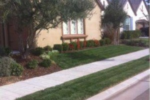 Photo #9: ACOSTA LAWN SERVICES