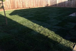Photo #2: ACOSTA LAWN SERVICES
