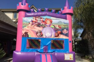 Photo #22: Bounce house specials!