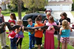Photo #13: Reptile Ron Animal Presentations