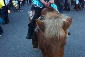 Photo #2: Pony Rides for your event!
