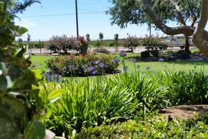 Photo #5: Professional Gardening Services