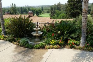 Photo #4: Professional Gardening Services