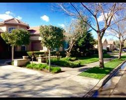 Photo #10: GREEN GROW Lawn, Yard and Tree Services