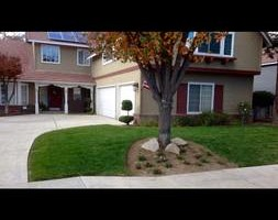 Photo #7: GREEN GROW Lawn, Yard and Tree Services