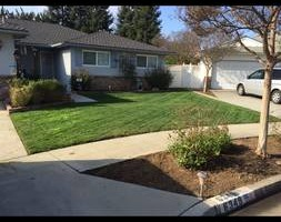 Photo #6: GREEN GROW Lawn, Yard and Tree Services